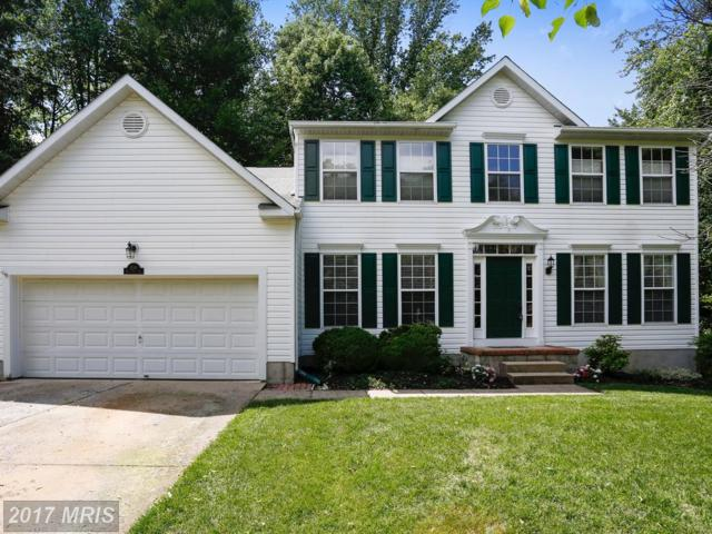 1248 Viking Drive S, Arnold, MD 21012 (#AA9956809) :: Pearson Smith Realty
