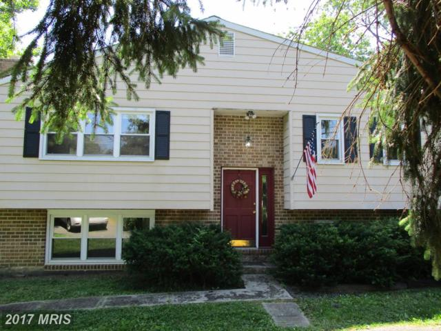 503 Hillsmere Drive, Annapolis, MD 21403 (#AA9973754) :: Pearson Smith Realty