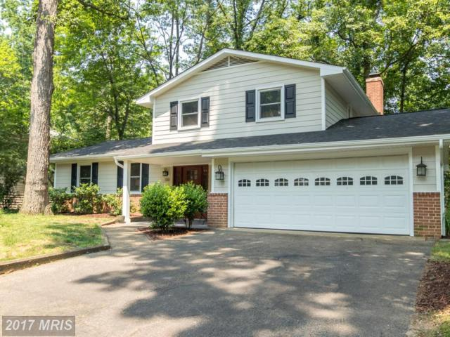 510 Bayberry Drive, Severna Park, MD 21146 (#AA9974353) :: Pearson Smith Realty