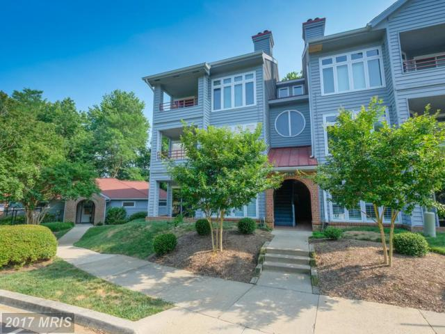 1144 Lake Heron Drive 2A, Annapolis, MD 21403 (#AA9977928) :: Pearson Smith Realty