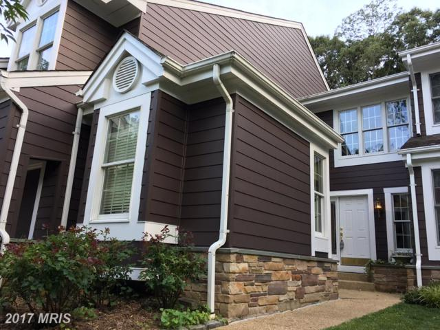 113 Summer Village Drive, Annapolis, MD 21401 (#AA9982272) :: Pearson Smith Realty