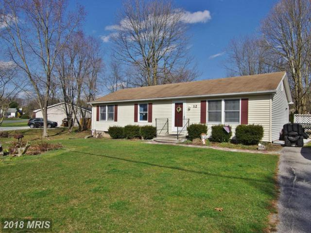 12 Trout Run Trail, Fairfield, PA 17320 (#AD10202071) :: The Gus Anthony Team