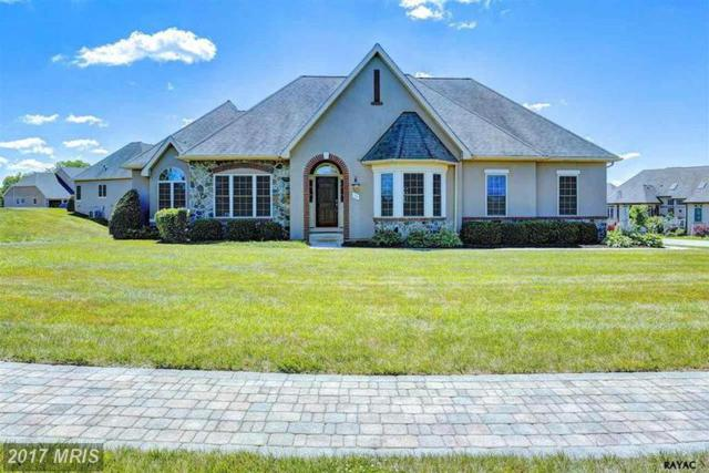 105 Clubhouse Drive, Gettysburg, PA 17325 (#AD9737216) :: LoCoMusings