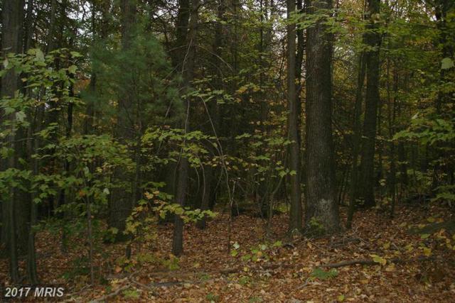151 Pine Grove Furnace Road, Aspers, PA 17304 (#AD9796618) :: LoCoMusings