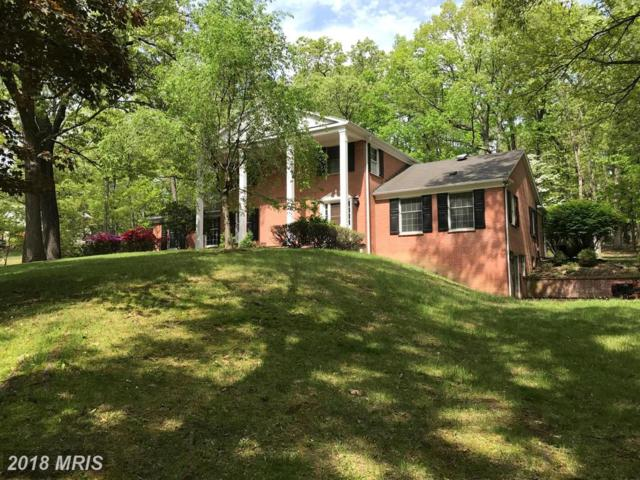 517 Cobey Drive, Cumberland, MD 21502 (#AL10004969) :: Keller Williams Pat Hiban Real Estate Group