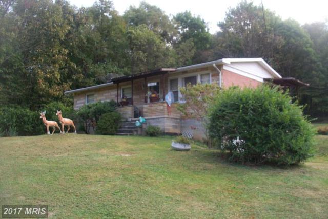 13614 Blank Road NW, Mount Savage, MD 21545 (#AL9805098) :: LoCoMusings