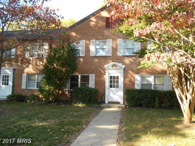 2907-A 16TH Road S 2907A, Arlington, VA 22204 (#AR10090916) :: Pearson Smith Realty