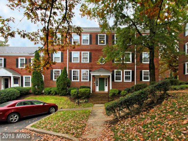 2834 Abingdon Street S A1, Arlington, VA 22206 (#AR10145702) :: CR of Maryland