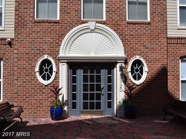 5120 Donovan Drive #306, Alexandria, VA 22304 (#AX10053575) :: Pearson Smith Realty