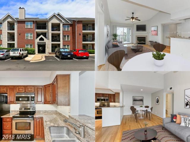 3310 Wyndham Circle #315, Alexandria, VA 22302 (#AX10238503) :: Keller Williams Pat Hiban Real Estate Group