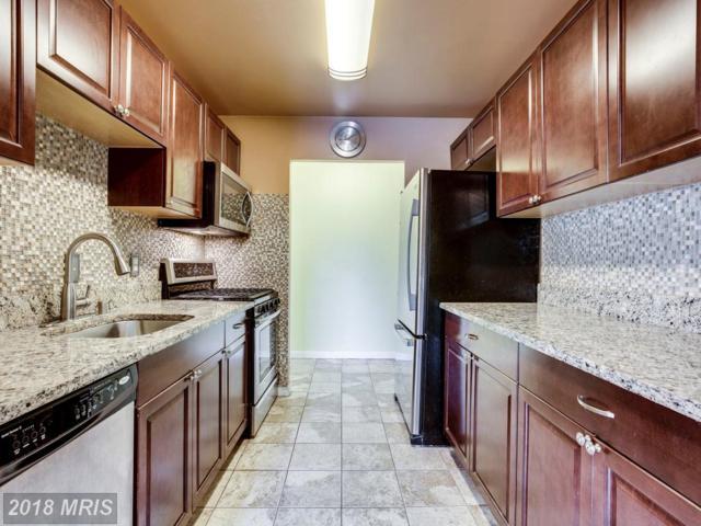 5205 Duke Street #303, Alexandria, VA 22304 (#AX10296495) :: Pearson Smith Realty