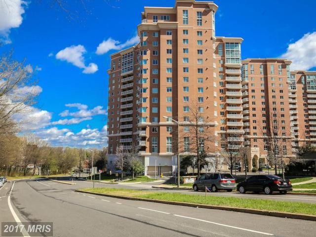 3101 Hampton Drive #310, Alexandria, VA 22302 (#AX9909042) :: Pearson Smith Realty
