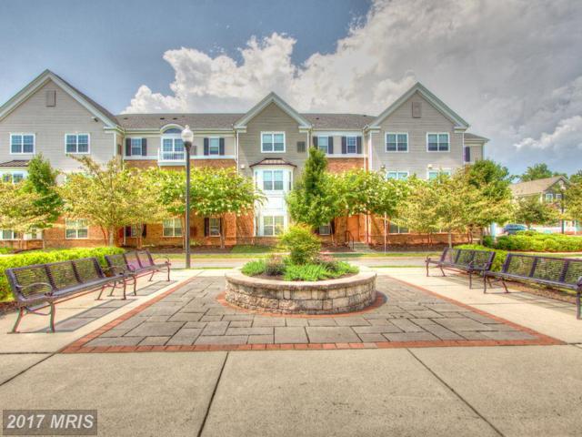 1635 Evergreen Way, Essex, MD 21221 (#BC10016638) :: Pearson Smith Realty