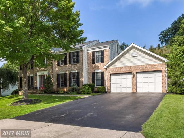 12108 Long Lake Drive, Owings Mills, MD 21117 (#BC10037833) :: Pearson Smith Realty