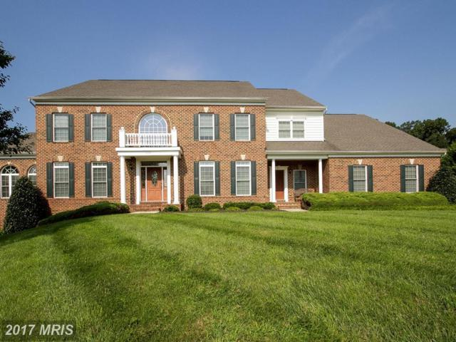508 Timber Springs Court, Reisterstown, MD 21136 (#BC10042178) :: Pearson Smith Realty