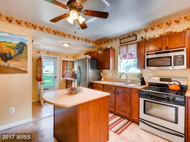 1304 Rosewick Avenue, Baltimore, MD 21237 (#BC10046716) :: Pearson Smith Realty