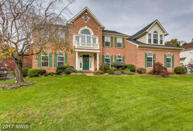 8 Spring Knoll Court, Lutherville Timonium, MD 21093 (#BC10094988) :: Pearson Smith Realty