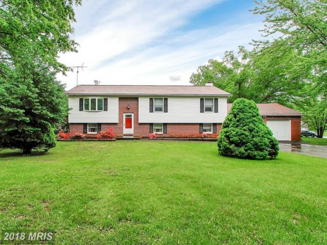 3 Teresa Marie Court, Millers, MD 21102 (#BC10133796) :: Advance Realty Bel Air, Inc