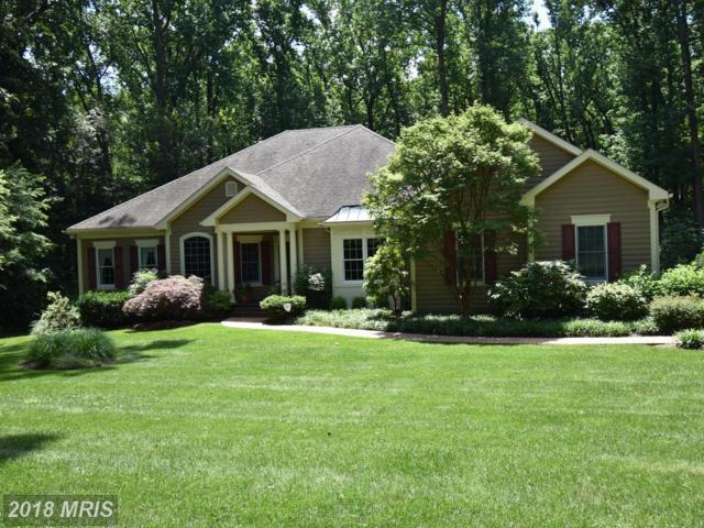 3610 Hampshire Glen Court, Phoenix, MD 21131 (#BC10208574) :: Bob Lucido Team of Keller Williams Integrity