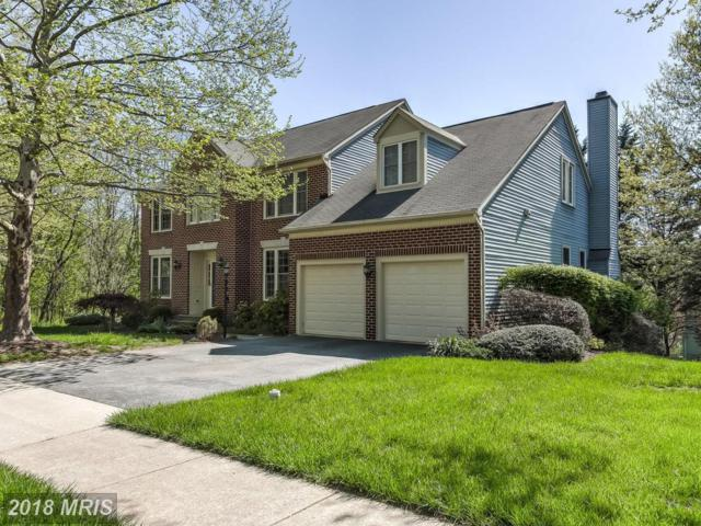 11615 Mayfair Field Drive, Lutherville Timonium, MD 21093 (#BC10219494) :: The Gus Anthony Team
