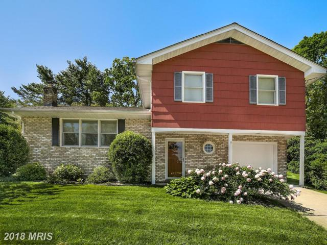 4803 Hilltop Court, Baltimore, MD 21236 (#BC10251954) :: Bob Lucido Team of Keller Williams Integrity