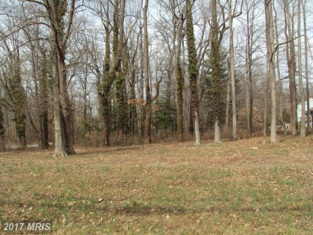 0 Turkey Point Road, Essex, MD 21221 (#BC9880060) :: Pearson Smith Realty