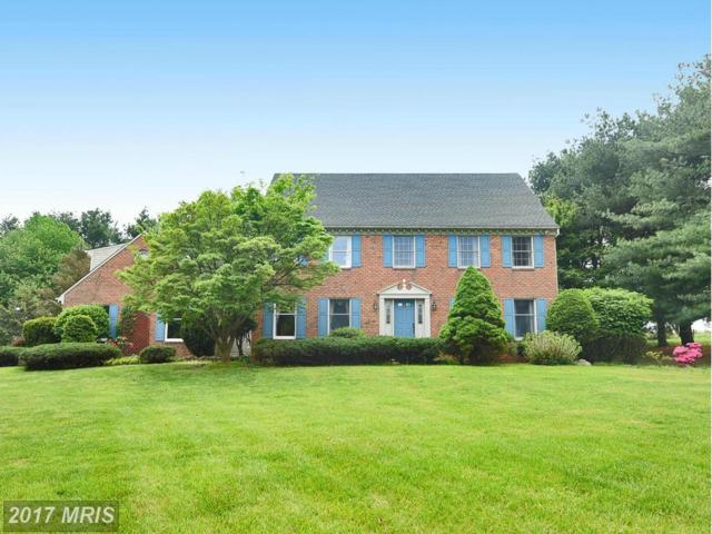 9 Hiddenbrook Court, Phoenix, MD 21131 (#BC9942462) :: Pearson Smith Realty