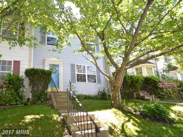 31 Black Oak Court, Reisterstown, MD 21136 (#BC9950554) :: Pearson Smith Realty