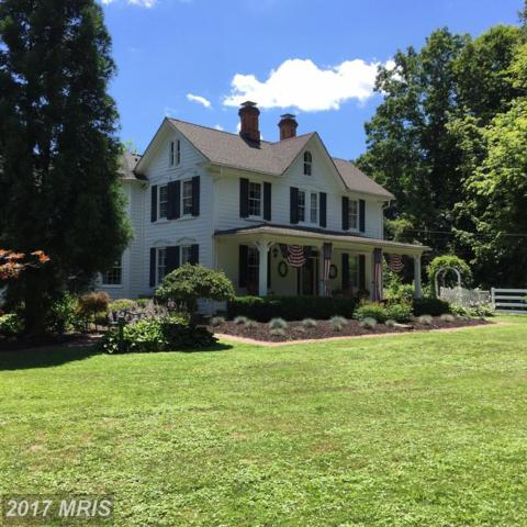 11409 Raphel Road, Upper Falls, MD 21156 (#BC9984054) :: Pearson Smith Realty