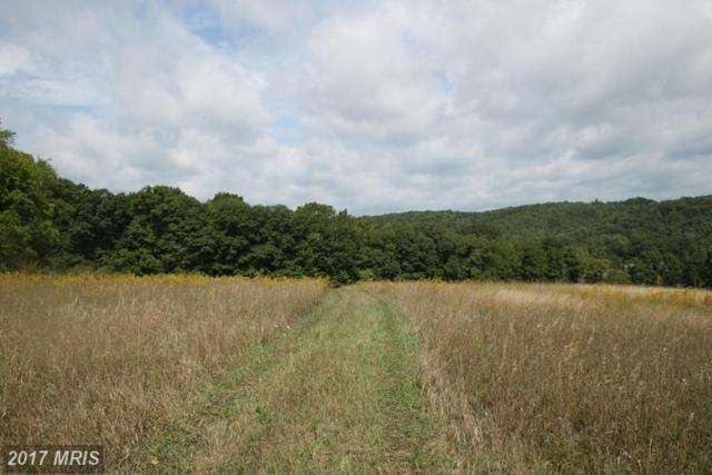 Akers Road, Clearville, PA 15535 (#BD9753805) :: LoCoMusings