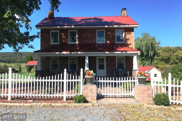 4625 Bedford Valley Road, Bedford, PA 15522 (#BD9785250) :: LoCoMusings