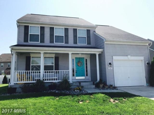 325 Brandenburg Drive, Falling Waters, WV 25419 (#BE10032316) :: Pearson Smith Realty
