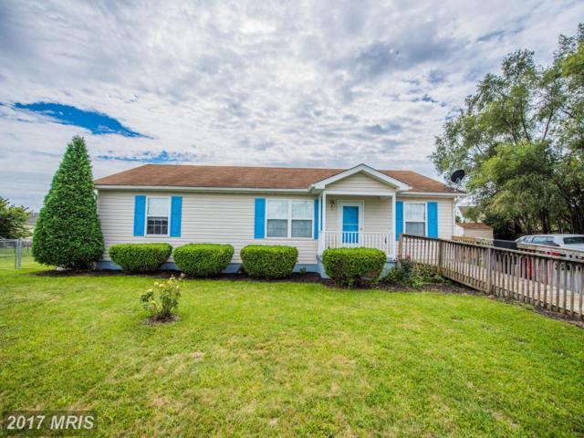 71 Sedge Wren Lane, Martinsburg, WV 25405 (#BE10051803) :: Pearson Smith Realty