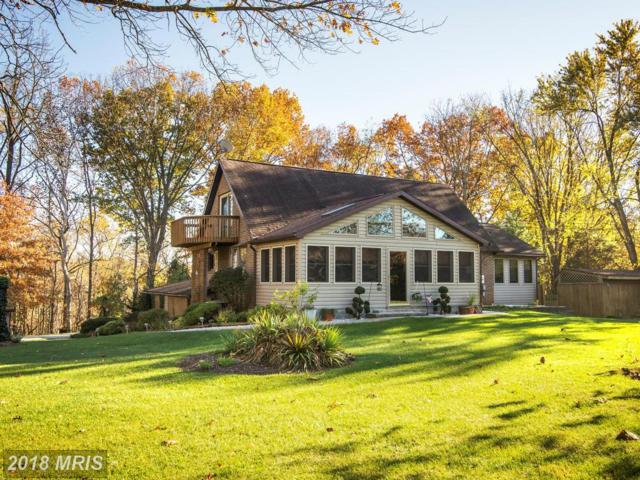 258 Merrimack Drive, Falling Waters, WV 25419 (#BE10098065) :: Pearson Smith Realty