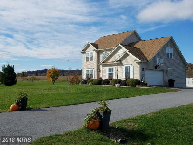 43 Chisholm Drive, Hedgesville, WV 25427 (#BE10102248) :: The Dwell Well Group