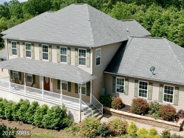 818 Grimaldi Way, Hedgesville, WV 25427 (#BE10166951) :: The Gus Anthony Team