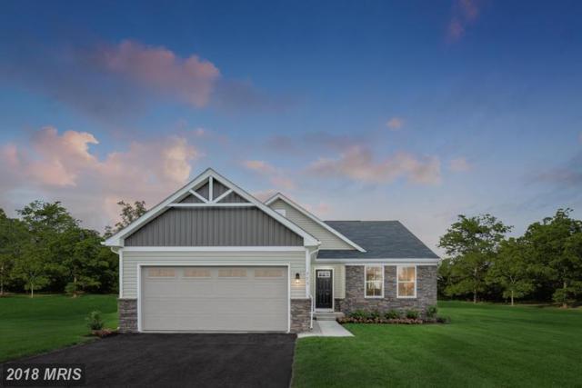 172 Banks Avenue, Bunker Hill, WV 25413 (#BE9012165) :: Keller Williams Pat Hiban Real Estate Group