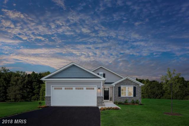 173 Banks Avenue, Bunker Hill, WV 25413 (#BE9012177) :: Keller Williams Pat Hiban Real Estate Group