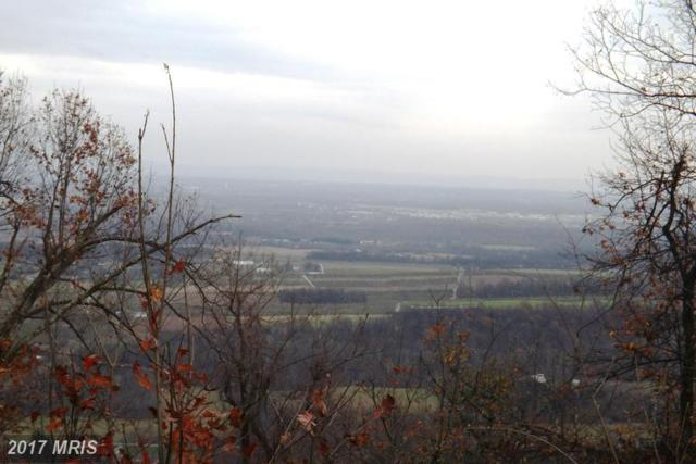 Tuscarora Pike, Martinsburg, WV 25403 (#BE9718598) :: LoCoMusings