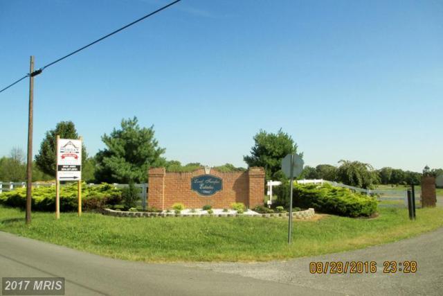 LOT 2 Eiderdown Drive, Martinsburg, WV 25404 (#BE9755452) :: LoCoMusings