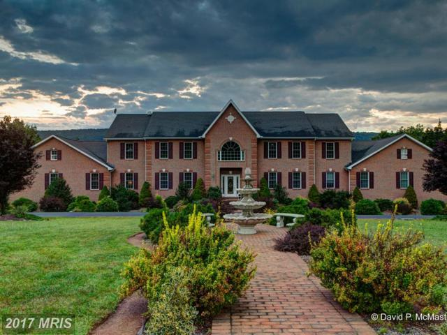 245 Turquoise Drive, Hedgesville, WV 25427 (#BE9794962) :: Pearson Smith Realty