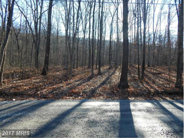 610 Huckleberry Lane, Gerrardstown, WV 25420 (#BE9841999) :: Pearson Smith Realty