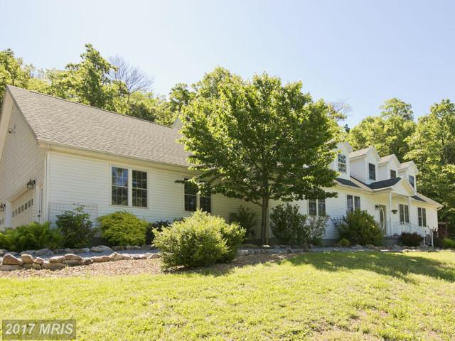 807 Driftwood Drive, Gerrardstown, WV 25420 (#BE9952982) :: Pearson Smith Realty