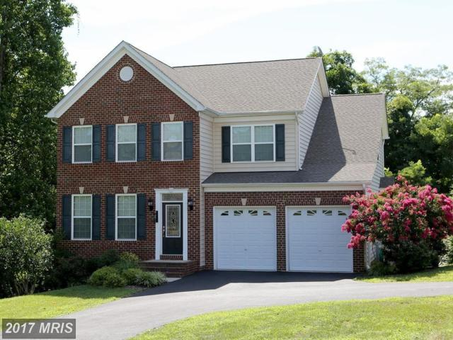 3678 Middle Ground Court, Chesapeake Beach, MD 20732 (#CA10031387) :: Pearson Smith Realty