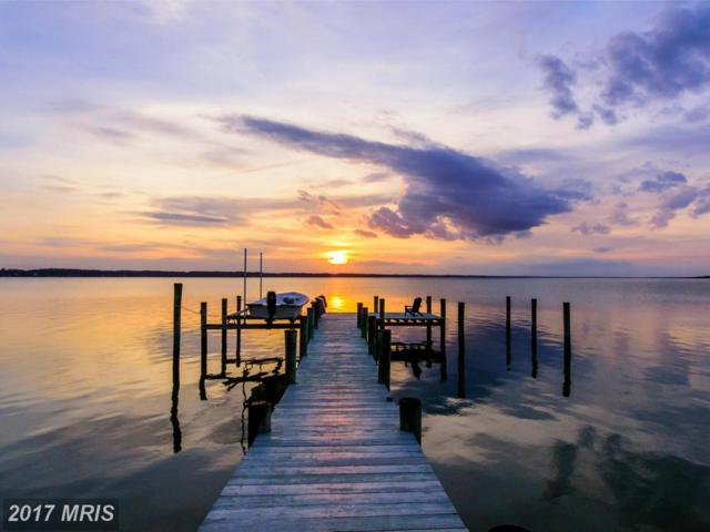 9435 River View Road, Broomes Island, MD 20615 (#CA9899295) :: Pearson Smith Realty