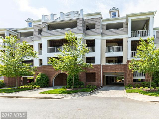 13824 Reef Way #301, Dowell, MD 20629 (#CA9920753) :: Pearson Smith Realty