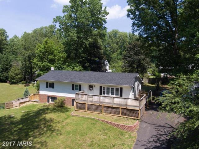 5664 Floral Circle, Saint Leonard, MD 20685 (#CA9977754) :: Pearson Smith Realty