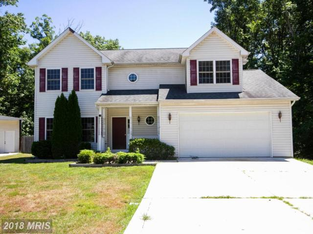 16 Rowles Lane, North East, MD 21901 (#CC10290710) :: Keller Williams Pat Hiban Real Estate Group