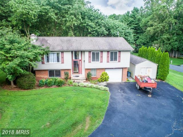 130 Evan Drive, Elkton, MD 21921 (#CC10301520) :: Keller Williams Pat Hiban Real Estate Group
