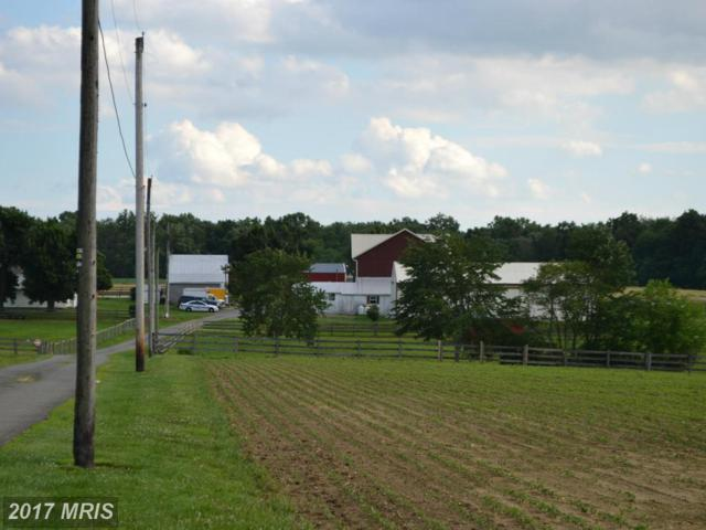 360 Joseph Biggs Memorial Highway, Rising Sun, MD 21911 (#CC8691816) :: LoCoMusings